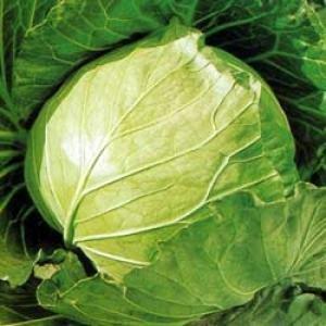 6种低热量的蔬菜 能促进脂肪分解